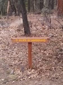 Hike_mile2