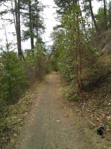 Hike_mile4