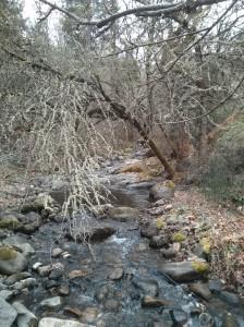 Hike_stream