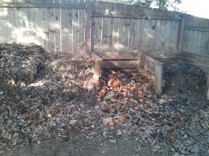 Composting easy first step to organicanize my kitchen