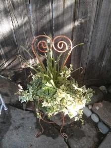 Mom Garden 6
