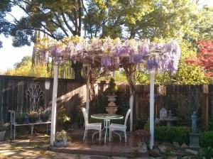 Mom Garden